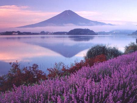 走訪6處日本私房婚紗攝影景點!拍出夢幻幸福的瞬間